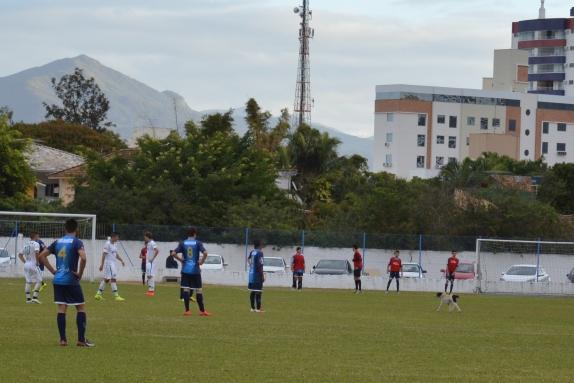 Jogadores do Guarani observam cusco dando uma banda pelo gramado do Renato Silveira. (Foto: Lucas Gabriel Cardoso)