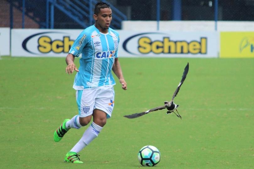 Avaí x Grêmio60