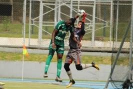 Palmeiras x Joinville15