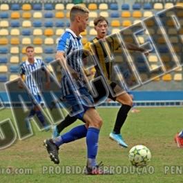 PEN-AVA015