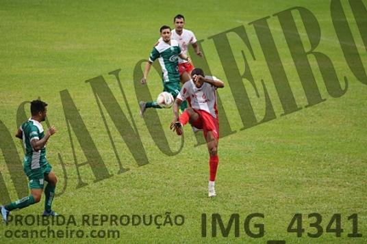 IMG_4341